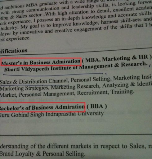 "English Whirled Wide says: Vipul Jain from India sent this CV ""that landed on my desk."""